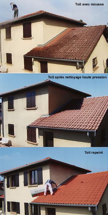 traitement des toitures et des tuiles artisan lopez pr s de lyon 69. Black Bedroom Furniture Sets. Home Design Ideas